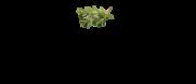 Agroturystyka Kaszuby Gościna
